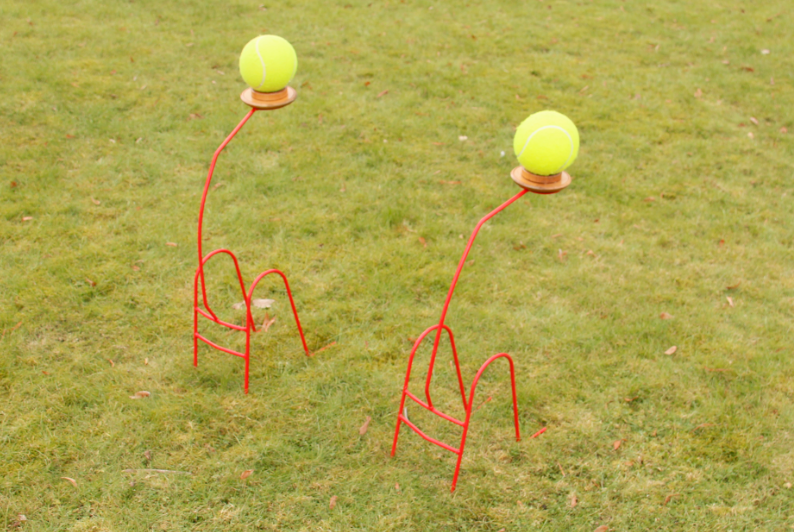 Zeskamp spel 'Ballopen' huren