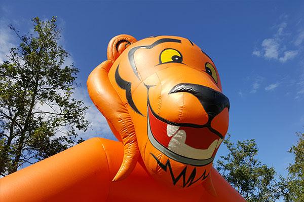 tiger-slide-1